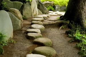 Path1-300x200