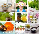 homeopathy4