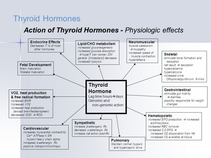 Thyroid+Hormones+Action+of+Thyroid+Hormones+-+Physiologic+effects